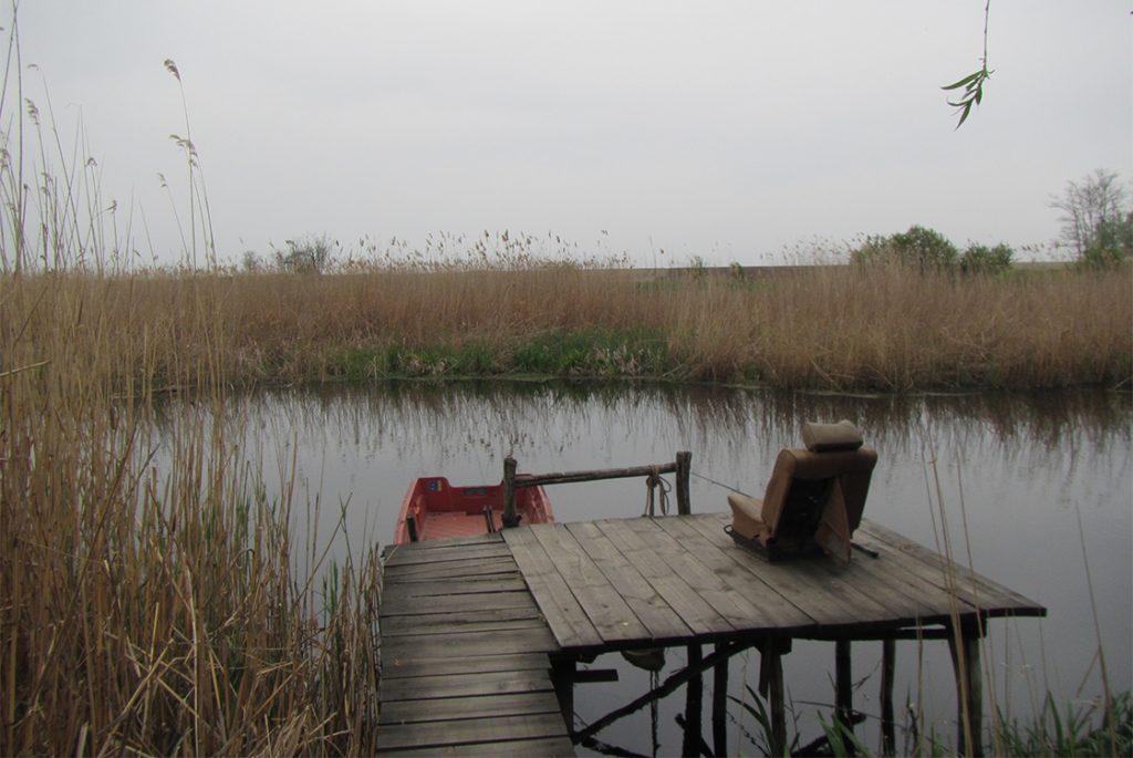 Jegrička, reka, Vojvodina, Bačka, kanal, sportski ribolov, pecanje, Tisa, trska, kockice života kockice života