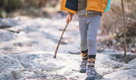 Deca na planini, kockice zivota, kockice života