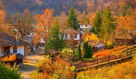 baba, jesen, ognjište, kockice zivota, kockice života, selo, seoska idila, detinjstvo