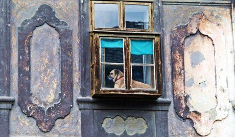 kibic fenster, prozor, stara vremena, istorija, kockice života, kockice zivota