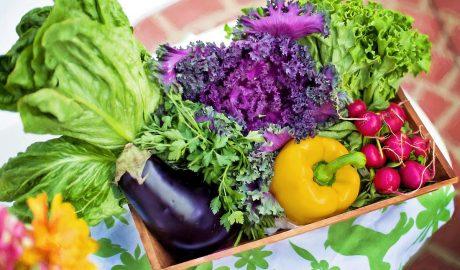 Vegetarijanska ishrana, saveti vege, kockice zivota