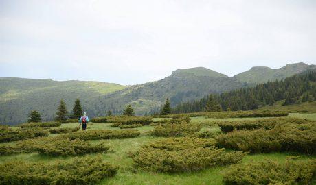 Ultratrail, Stara planina, running, trail, kockice života, kockice zivota, ultra