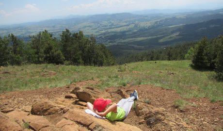 Divčibare, planina, deca na planini, kockice zivota, kockice života