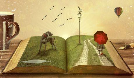 Festival knjige, NOFEK, kockice zivota, kockice života