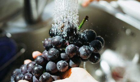 Zdrav život,zdravlje,uklanjanje pesticida,kockice zivota