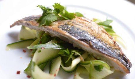 recept, skuša, komorač, kuhinja, recepti, riba, kockice života, kockice zivota